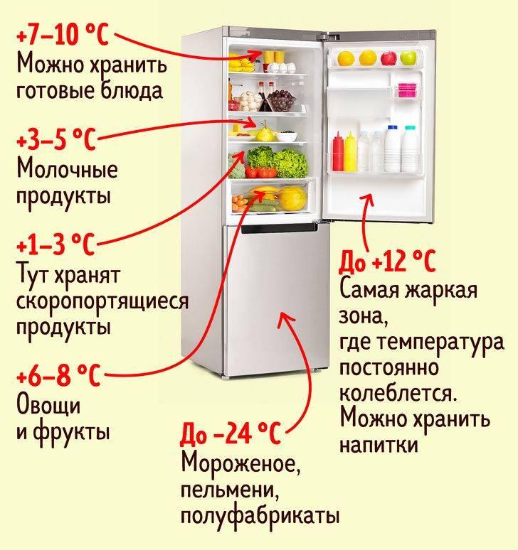 10 лучших холодильников с зоной свежести - рейтинг 2021
