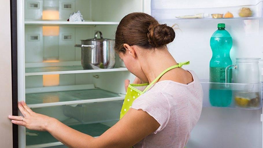 Как правильно разморозить ипомыть холодильник? популярные способы исоветы