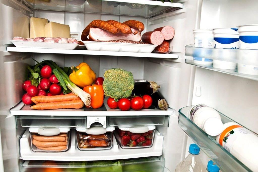 Правила эксплуатации холодильника: расскажем нюансы, продлим срок службы