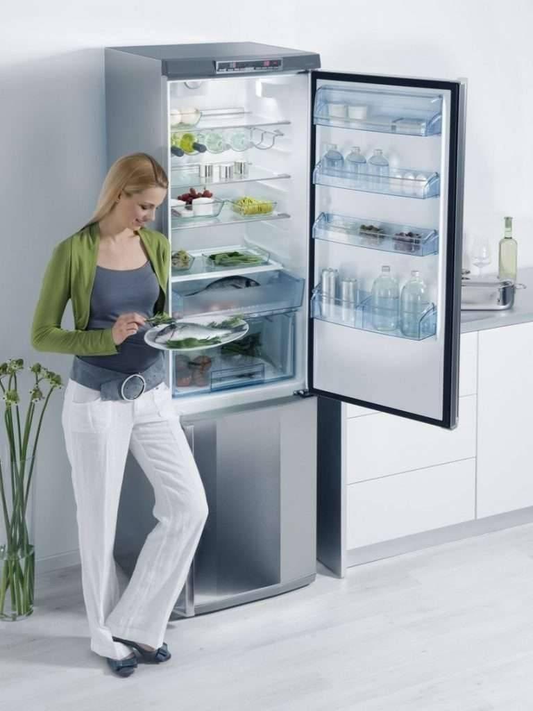 Как разморозить холодильник no frost: обзор- инструкции +видео