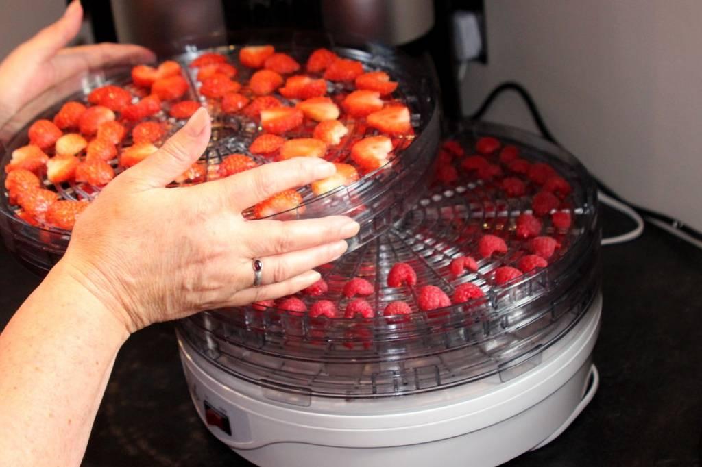 Как правильно сушить ягоды