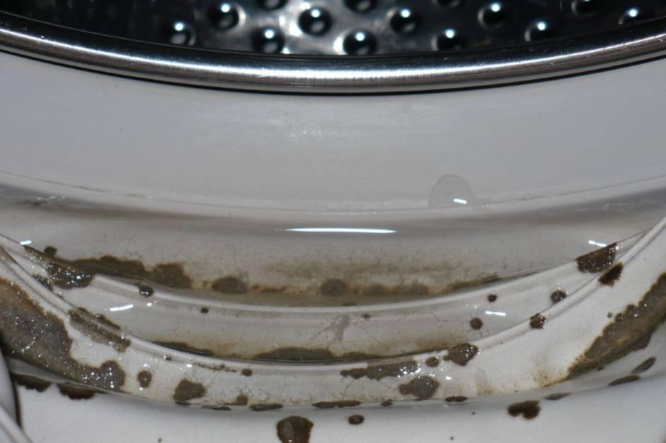 Как убрать плесень в стиральной машине на резине: как удалить грибок на резиновых частях народными средствами и специальными химсоставами?