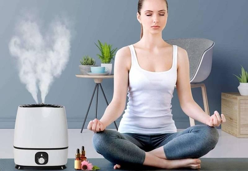 Нужен ли увлажнитель воздуха и стоит ли его выбирать для улучшения микроклимата дома
