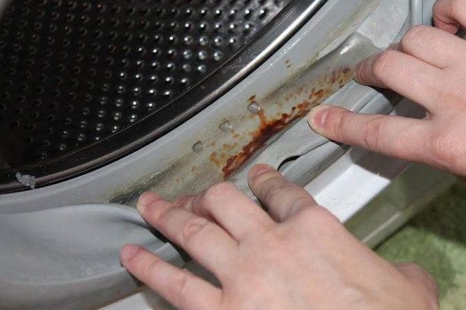 Как очистить стиральную машину от плесени (избавиться, почистить)?