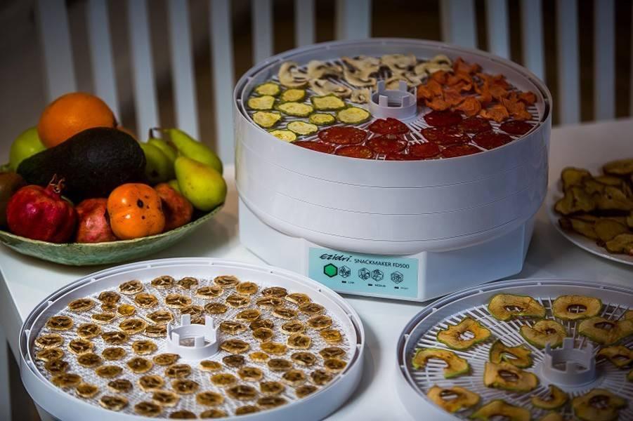 5 правил как выбрать хорошую сушилку для фруктов и овощей - какая лучше отзывы домохозяек. рейтинг и ошибки при эксплуатации.