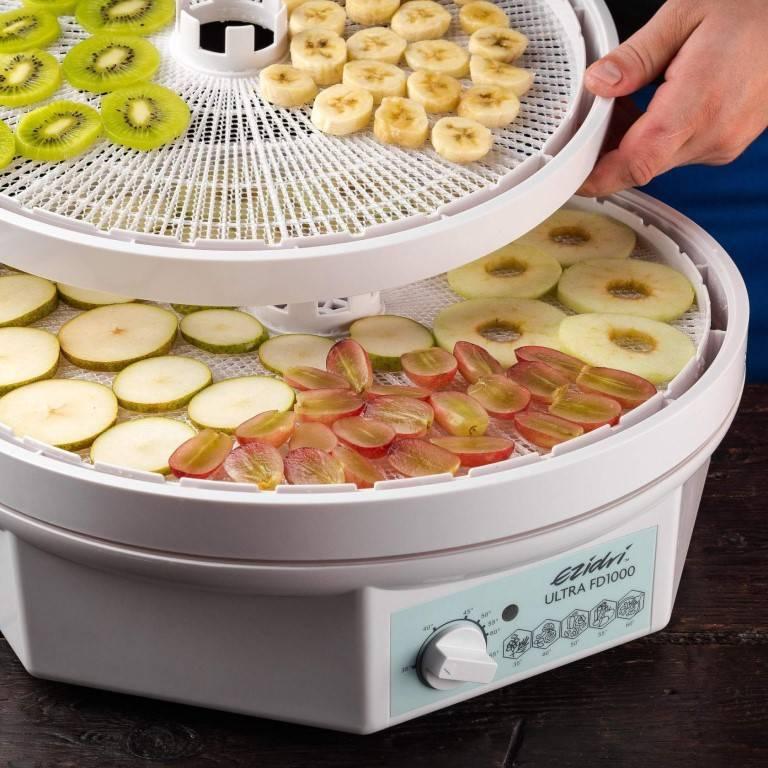 Что можно сушить в сушилке для овощей: какие фрукты и овощи можно использовать