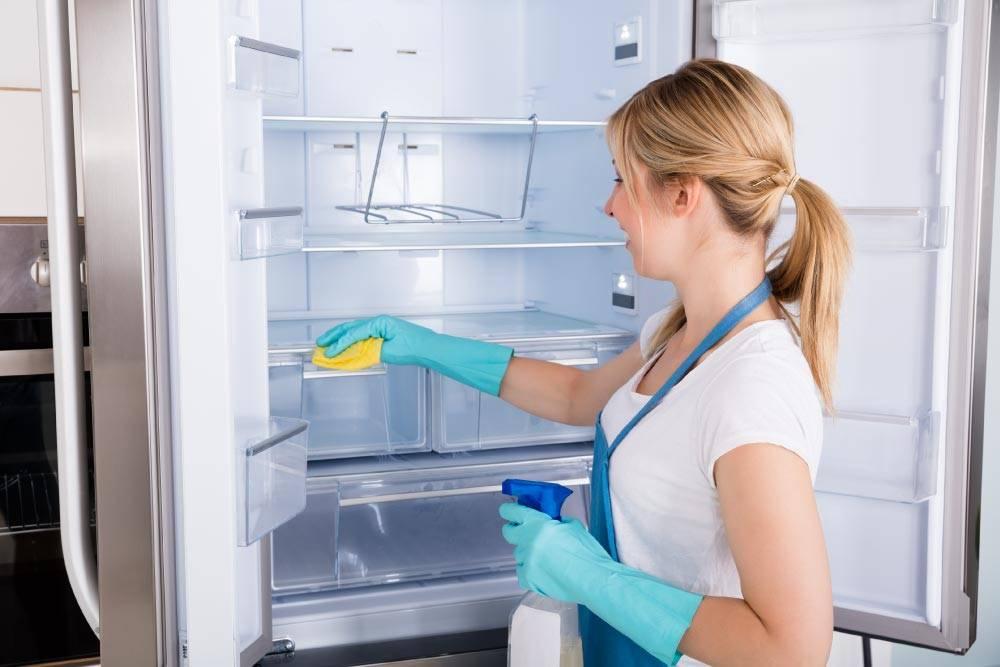 Как мыть холодильник внутри после разморозки и снаружи, как правильно и быстро провести чистку в домашних условиях?