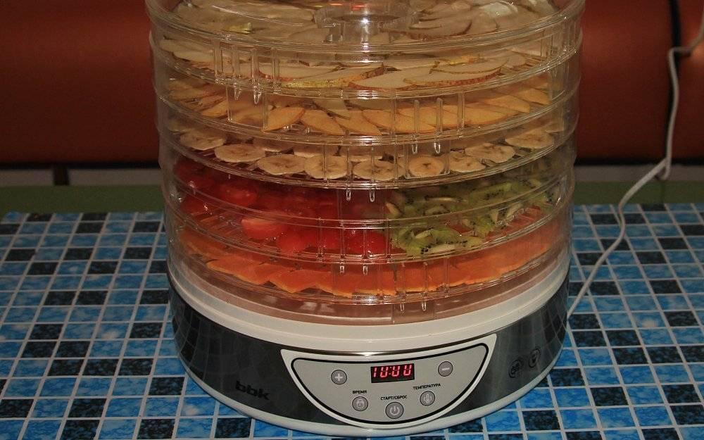 Как пользоваться сушилкой для овощей и фруктов: принцип работы
