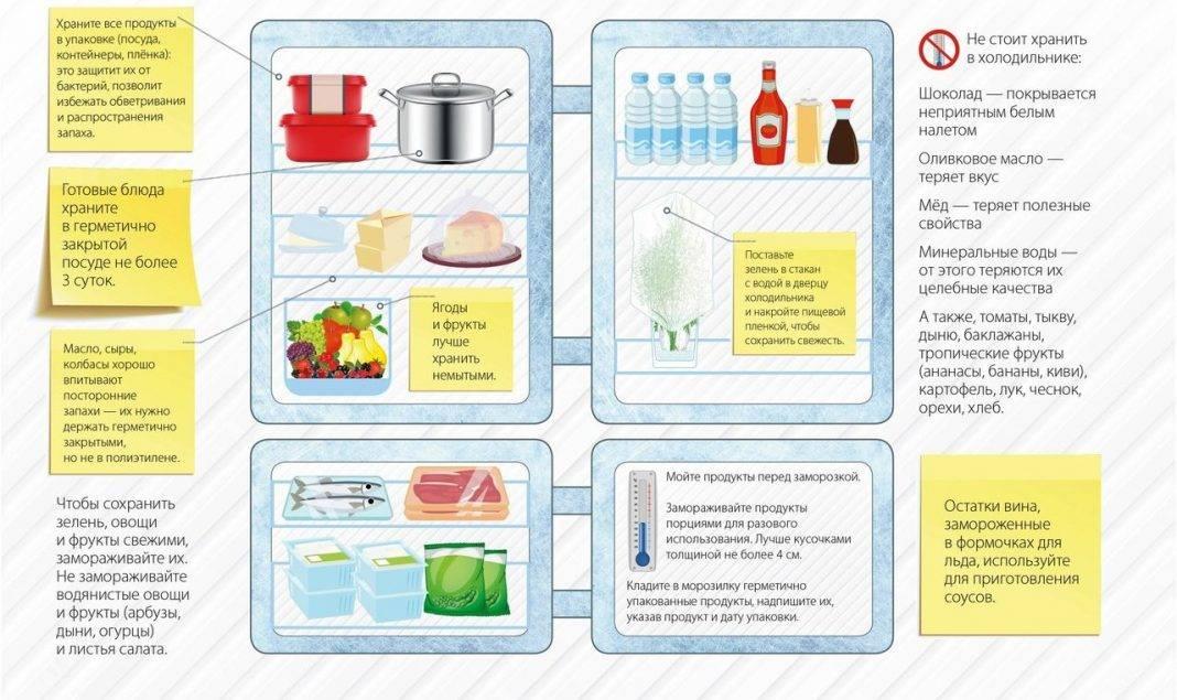 Как правильно хранить продукты в холодильнике: главные советы    ichip.ru