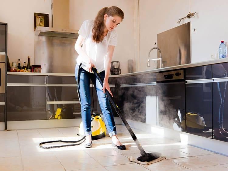 Что лучше пароочиститель или моющий пылесос