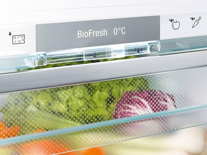 Fresh balancer в холодильнике lg - что это