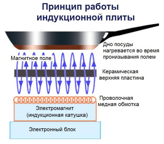 Индукционная или электрическая варочная панель: что лучше