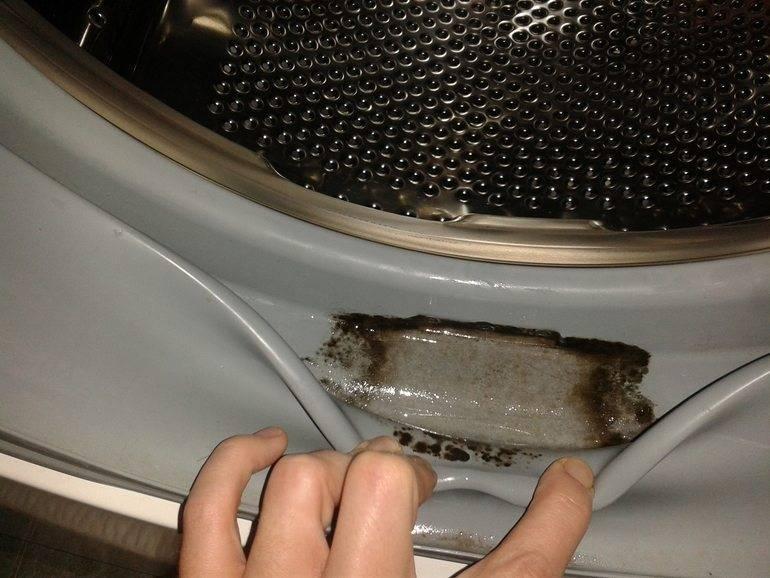 Как избавиться от плесени в стиральной машине: как очистить и отмыть прибор от черного налета и удалить грибок