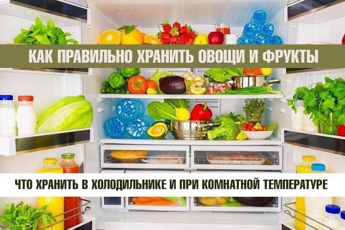Все, что нужно знать о холодильниках: четко, ясно и по пунктам