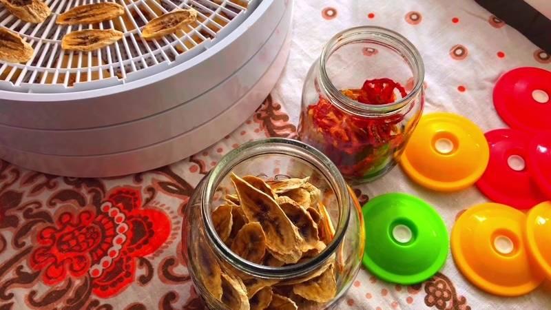 Как правильно сушить фрукты и ягоды в домашних условиях